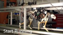 MIT Cheetah runs at 22 km/h, Gait transition from trot to gallop