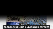 Global warming and its bad effects on human being and earh.
