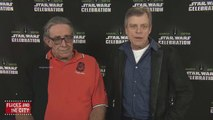 Star Wars The Force Awakens Interview - Mark Hamill & Peter Mayhew