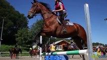 Colonie de vacances équitation Je passe mon galop VITACOLO.mov
