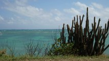 Partance Immédiate - Antilles