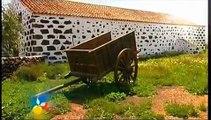 Isola di Fuerteventura:  Viaggio e Vacanza in Corralejo ~ Hostel room~ Viaggi Canarie ~ Spagna