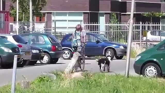 Utrecht cycling