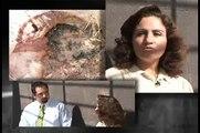 Entomología Forense (CLIP CLAVE FORENSE TV UAA)