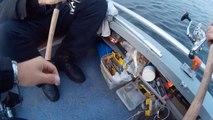 Рыбалка | Щука | Окунь | Троллинг | Твичинг | Дорожка | Херсон , sj4000 , ультралайт