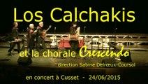 concert du  24/06/2015 Cusset