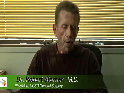 Medical Cannabis and it´s impact on Human Health – Medical Marijuana