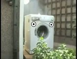 OMG Cat watches in awwe as a guy tosses a brick in Mr. Washing Machine