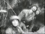 German News 1944 - WWII Normandy Campaign - RAF Hawker Typhoon hit by German Flak