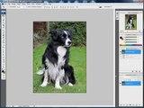 Adobe photoshop Tutorial - Using Gaussian Blur to create a soft focus effect on portraits