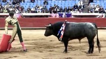 Toreros mexicanos/Mexican bullfighters