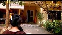 Kabusa Dönen Yolculuklar : Bangkok'un Yeraltı Dünyası (Türkçe Belgesel)
