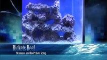 Rickets Reef - Skimmer and Biopellet Info