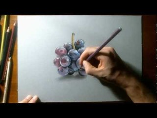 Realistic Drawing - How to draw grapes
