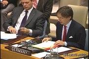 Security Council Statement: Ambassador Wittig on UNMIK, 8 February 2012