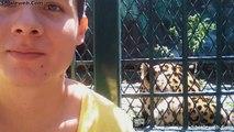 EL RECONOCIDO ACTOR ERICK NAVARRO CUIDA Y PROTEGE A LOS ANIMALES Y MASCOTAS UN DOCUMENTAL QUE MUESTRA EL AMOR QUE TIENE POR LA FAUNA Y EL MEDIO HAMBIENTE