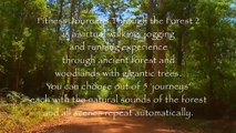 Fitness Journeys -Through the Forest 2, for indoor walking, treadmill and cycling workouts