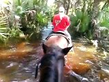 Horse Back Riding In the Swamps of Florida!