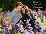 13. Christina Perri feat. Steve Kazee - A thousand years (Breaking Dawn 2 Soundtrack)
