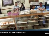 Ariana Grande : Baiser, donuts, insultes…la vidéo qui choque l'Amérique !