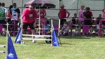 FINALE GPF 2015 RONCHAMP HELLBOY EPREUVE 1 JUMPING