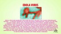 Ebola Virus? | Virus Outbreak In Africa | Causes-Symptoms-Preventions