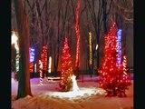 Noël en lumière 2010 - Sanctuaire Notre-Dame-du-Cap, Trois-Rivières, Québec, Canada