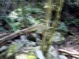 Uruguay: Treinta y tres: Quebrada de los cuervos