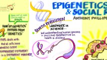 Epigenetics, Brain Science and Social Responsibility by Anthony Phillips, Brain Matters! Vancouver M