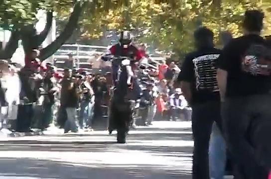 Harley Davidson Wheelie Fest