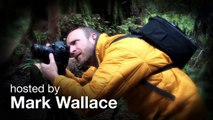 Light Meter Settings Ep 108: Exploring Photography with Mark Wallace: Adorama Photography TV
