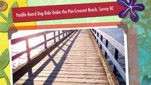Paddle Board Dog Ride Under the Pier-Crescent Beach, Surrey BC