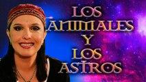 Los Animales y los Astros - Signos y Predicciones por Jimena La Torre