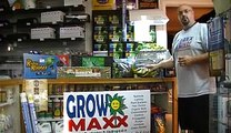 Cloning Plants 101 - Cloner, Rockwool or Plugs, 3 Ways to easy success!