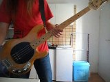 Red Hot Chili Peppers - Soul to Squeeze - Bass Cover