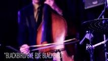 Sara Gazarek performs Blackbird Bye Bye Blackbird