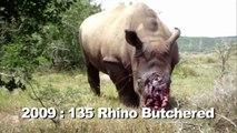 Rhino Butchered