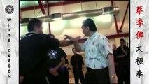 Yang Style Tai Chi Push Hands - Grandmaster Doc-Fai Wong