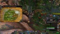 World of Warcraft: Hunter Pets Exotic Cats