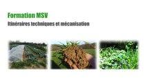 Formation MSV Itinéraires techniques et mécanisation Jour 2 Bilan de travail de groupe : Itinéraire de passage d'une prairie à une terre maraîchère