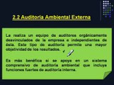 CLAUDIA VIVIANA PEREZ   AUDITORIA AMBIENTAL Ing Patricia A