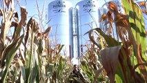Kevin Thiel: '14 MI Outstanding Young Farm Employee Award Winner