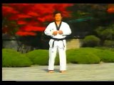 3. Taekwondo Poomsae Taegeuk Sam Jang (WTF)