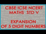Introducing 10,000 and expansion of 5 digit number - CBSE ICSE NCERT Maths Class VI
