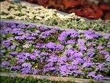 Floralies Nantes 1999