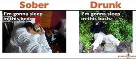 Sober vs. Drunk (Funny Pics)[1]