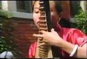 Liu Fang Chinese Traditional Pipa Music