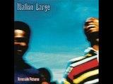 Walkin' Large feat. Jeru The Damaja - When I Flow