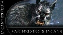 Van Helsing - Werewolf transformation