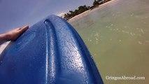 Galapagos GoPro Bodyboarding, Isabela Island (Dad & Daughter)